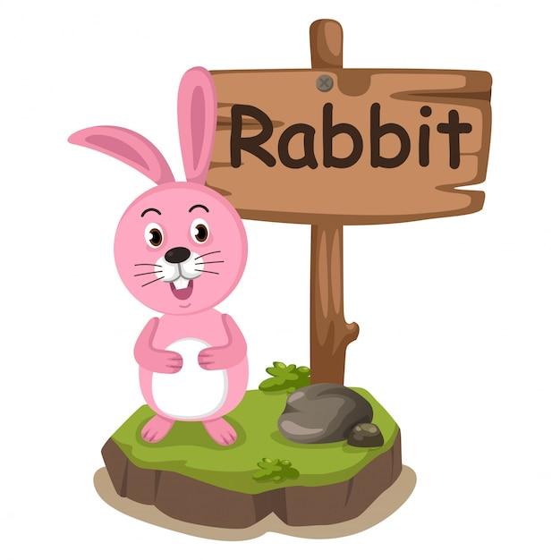 Tieralphabetbuchstabe r für kaninchen Premium Vektoren