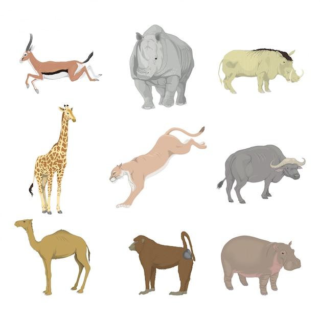 Tiere afrika Premium Vektoren