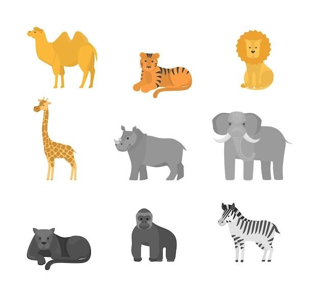 Tiere aus afrika setzen. sammlung von wildtieren in safari. elefant und girafee, tiger und löwe. illustration Premium Vektoren