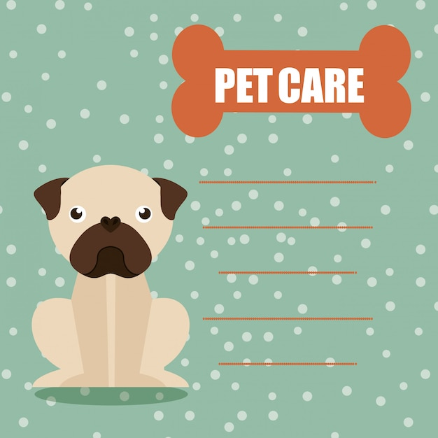 Tierpflege Premium Vektoren