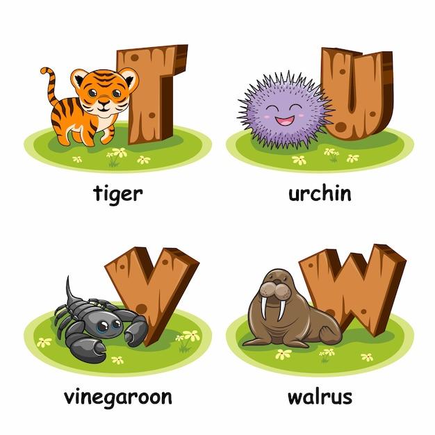 Tiger urchin essig walross holz alphabet tiere Premium Vektoren