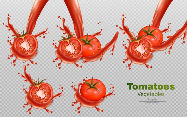Tomaten mit spritzeffekten Premium Vektoren
