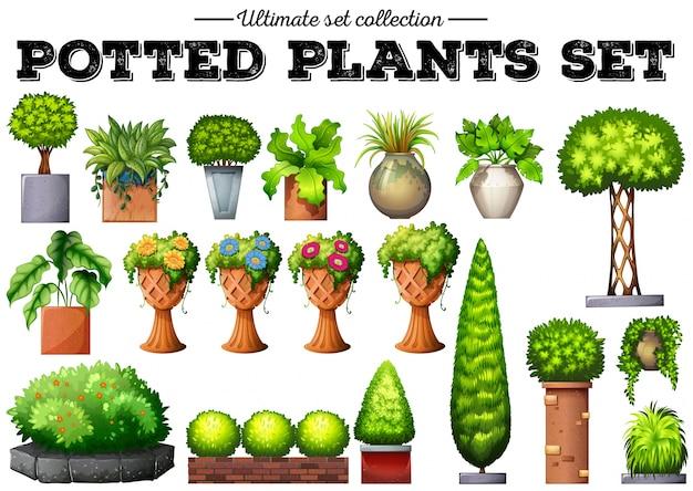 Topfpflanzen im garten illustration download der premium - Topfpflanzen garten ...
