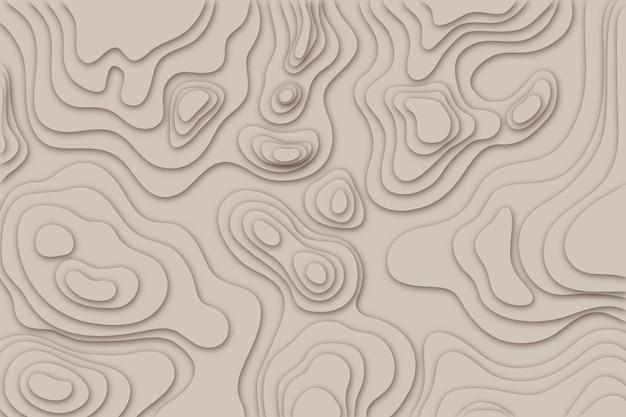 Topographisches kartenhintergrundkonzept Kostenlosen Vektoren