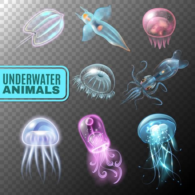 Transparente unterwasser-icon-set Kostenlosen Vektoren