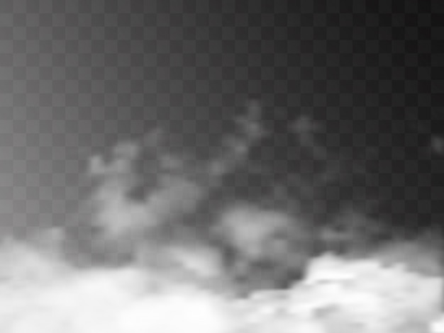 Transparenter spezialeffekt fällt bei nebel oder rauch auf. Premium Vektoren