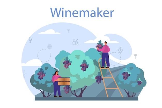 Traubenwein in einem holzfass Premium Vektoren