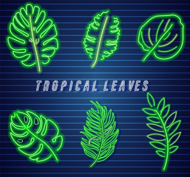 Tropic hinterlässt eine neonsammlung Premium Vektoren