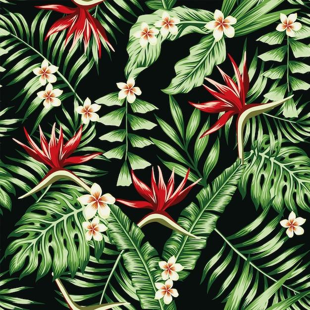 Tropische betriebsblätter und -blumen des frangipani plumeria und des paradiesvogels des nahtlosen musters tapezieren Premium Vektoren