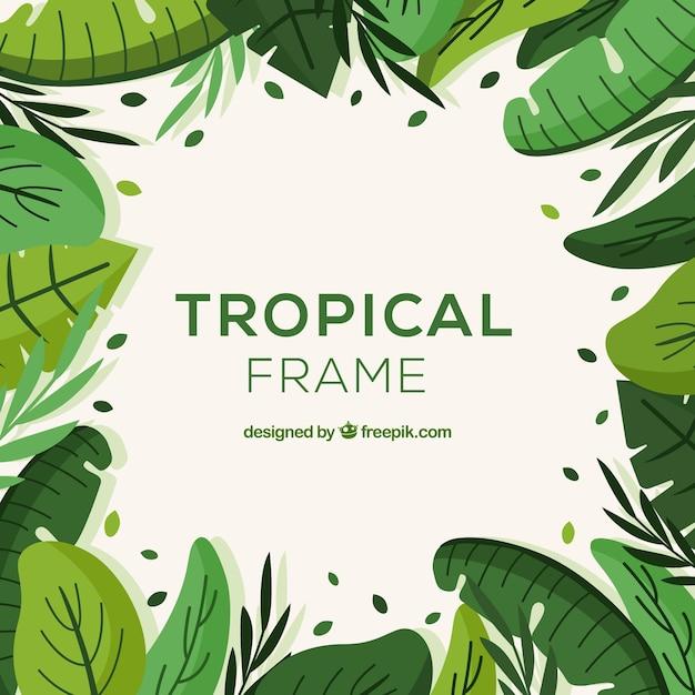 Tropische blätter rahmenkonzept Kostenlosen Vektoren