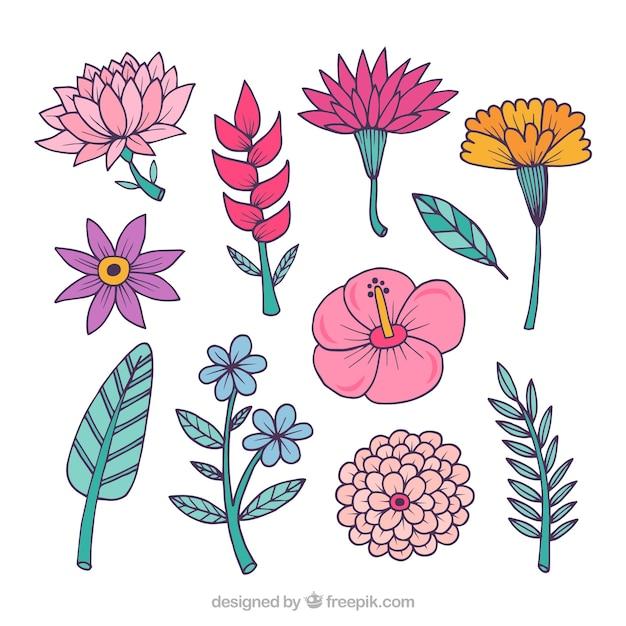 Beste Bereich Der Blumen Färbung Seite Zeitgenössisch - Entry Level ...