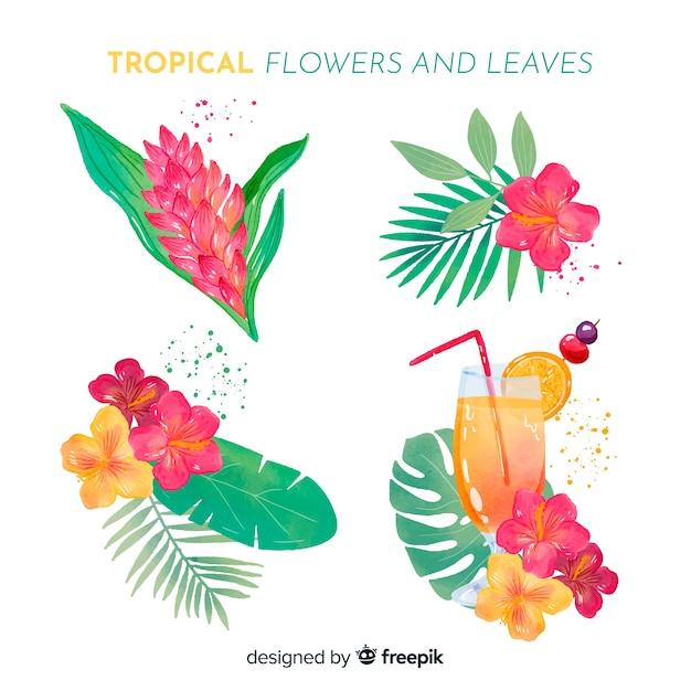 Tropische blumen und blätter des aquarells Kostenlosen Vektoren