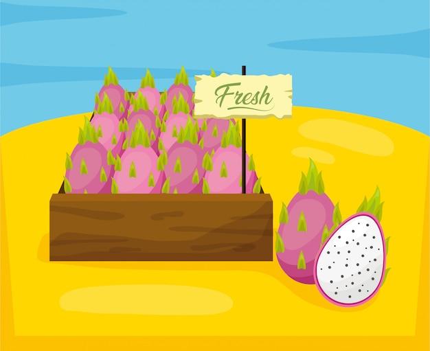 Tropische früchte hintergrund Kostenlosen Vektoren