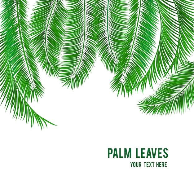Tropische palme-hintergrundfahne Kostenlosen Vektoren
