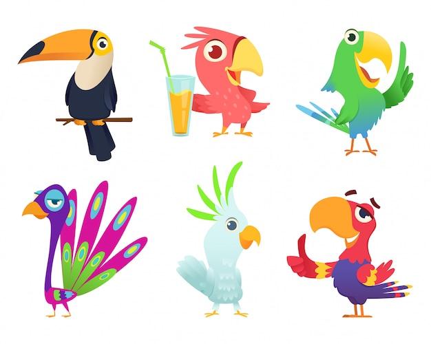 Tropische papageien zeichen. mit federn versehene exotische macawvogelhaustiere färbten flügel lustige exotische fliegenarara-aktion wirft bilder auf Premium Vektoren