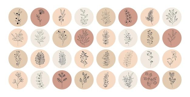 Tropische pflanzen, blätter und zweige mit blüten, satz von nerd-elementen mit kreisen verschiedener farben Premium Vektoren