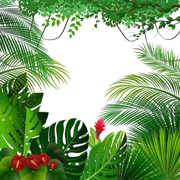 Tropischer dschungel hintergrund Premium Vektoren