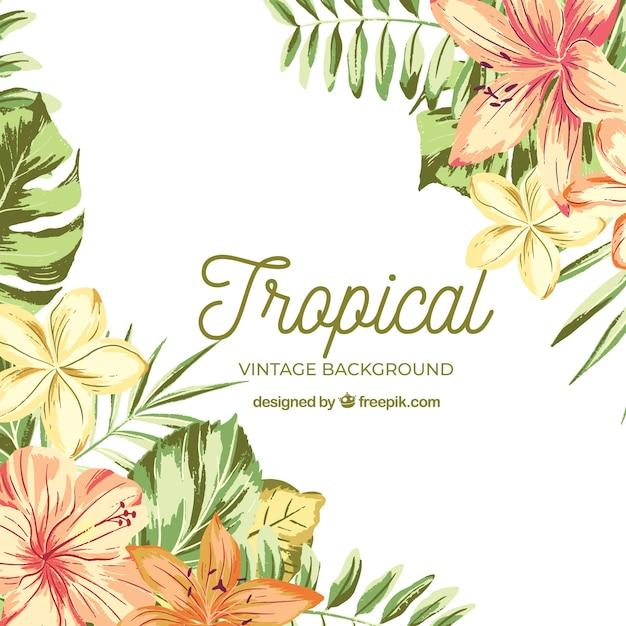 Tropischer hintergrund des aquarells mit weinleseart Kostenlosen Vektoren