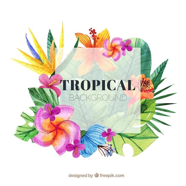 Tropischer hintergrund des reizenden aquarells Kostenlosen Vektoren