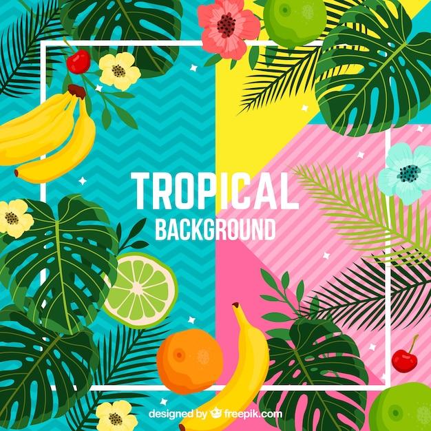 Tropischer hintergrund mit pflanzen und früchten Kostenlosen Vektoren