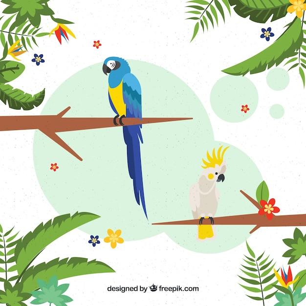 Tropischer hintergrund mit vögeln und pflanzen Kostenlosen Vektoren
