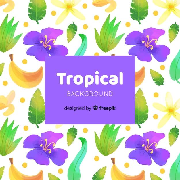 Tropischer hintergrund Kostenlosen Vektoren
