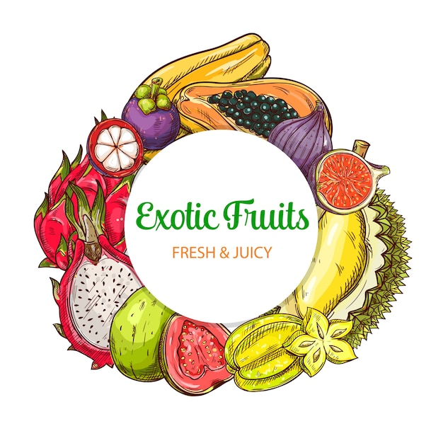 Tropischer obstvektor runder banner lokalisierter rahmen Premium Vektoren