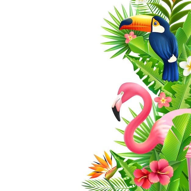 Tropischer regenwald flamingo Kostenlosen Vektoren