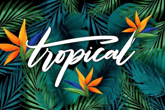 Tropischer schriftzug mit blättern oder blüten Kostenlosen Vektoren