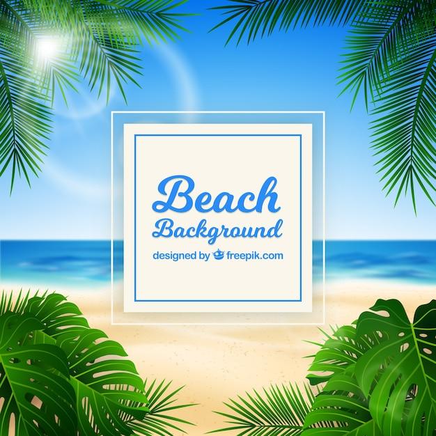 Tropischer strand mit realistischem design Kostenlosen Vektoren