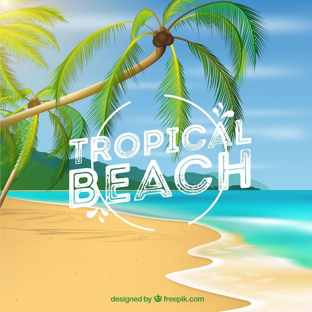 Tropischer strandhintergrund mit palmen in der realistischen art Kostenlosen Vektoren