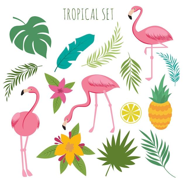 Tropischer vektor stellte mit rosa flamingos, palmblättern und blumen ein Premium Vektoren