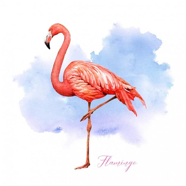 Tropischer vogelflamingo des aquarells mit buntem hintergrund. Premium Vektoren