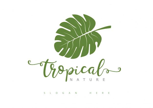 Tropisches blatt-logo Premium Vektoren
