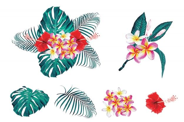 Tropisches botanisches bouqet mit blumen mit frangipan, hibiscas-blumen und monstara, palmblätter. Premium Vektoren