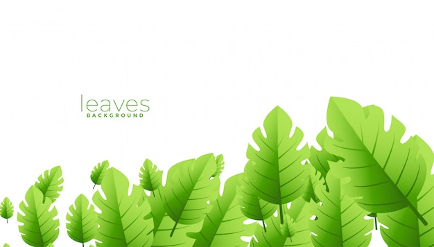 Tropisches exotisches grün hinterlässt hintergrunddesign Kostenlosen Vektoren