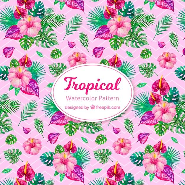Tropisches muster des bunten aquarells Kostenlosen Vektoren