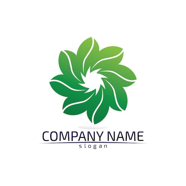 Umweltfreundliches logo des baumblatts Premium Vektoren