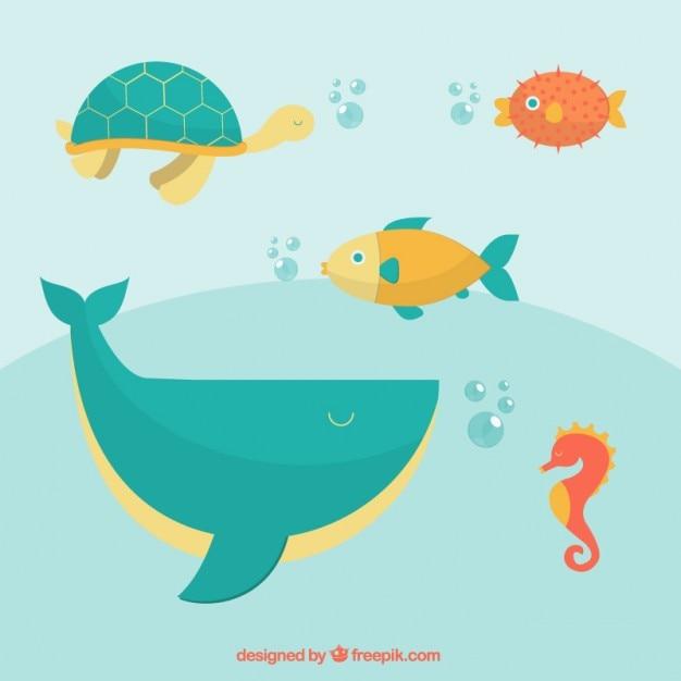 Unterwasser-wildtiere Kostenlosen Vektoren