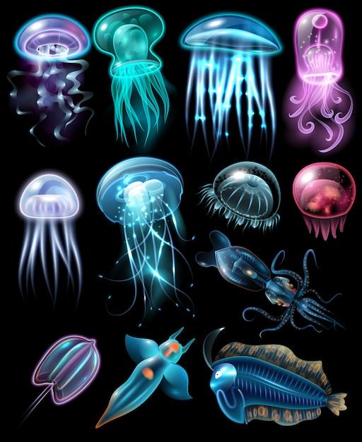 Unterwassertiere icon set Kostenlosen Vektoren