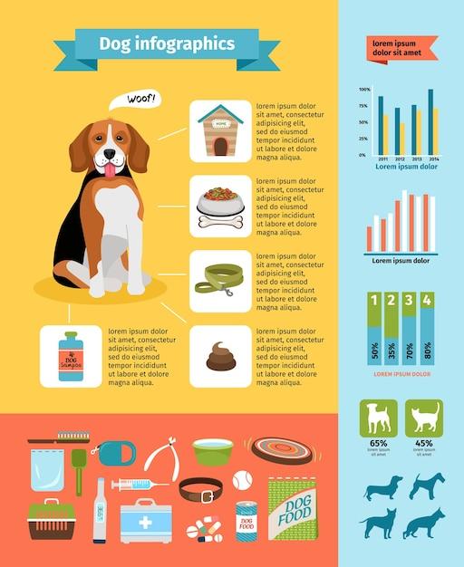 Vecto hundeinfografiken, hundefutter und zwinger, tierarzt und pflege, hundehalsband und hundeausstellungen Kostenlosen Vektoren