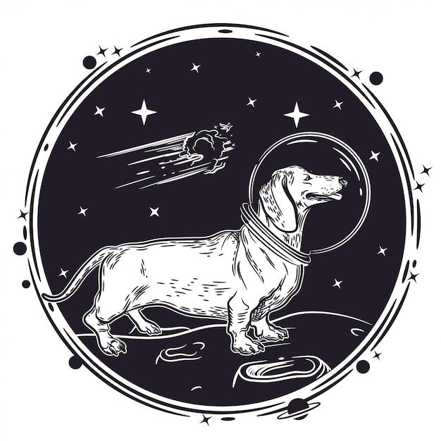Vector bild eines dachshunds im sturzhelm eines astronauten. Premium Vektoren