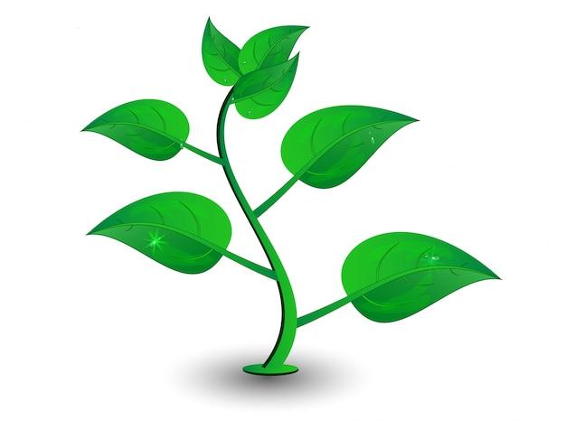 Vector grüne blütenblatt Kostenlosen Vektoren