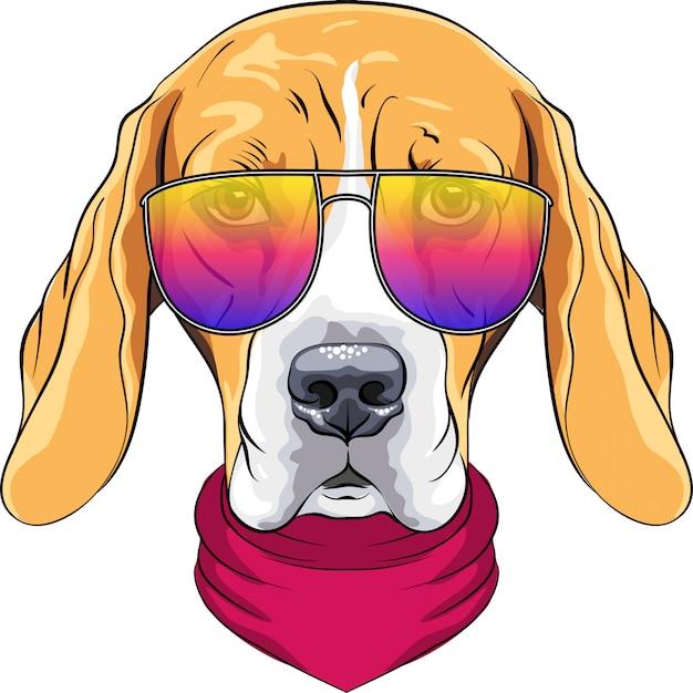 Vector hipster seriöser hund beagle rasse in roter krawatte und trendigen zweifarbigen brille Premium Vektoren