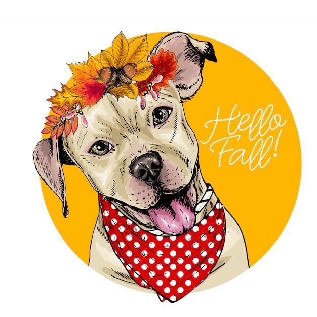 Vector porträt der tragenden herbstlaubkrone pit bull terrier-hundes. Premium Vektoren