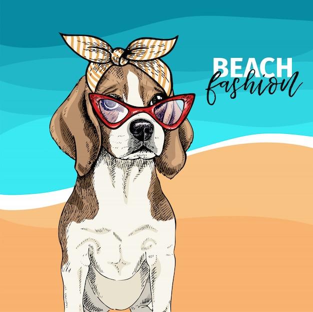 Vector porträt der tragenden sonnenbrille des spürhundhundes, retro- bandana. Premium Vektoren