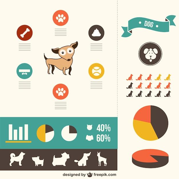 Vektor hunde infografie design Kostenlosen Vektoren