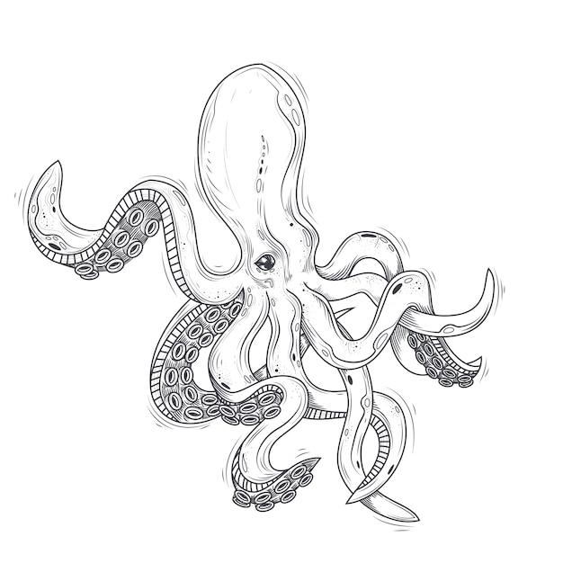 Vektor-illustration eines oktopus gemalt in einem gravur-stil isoliert auf weiß. Kostenlosen Vektoren