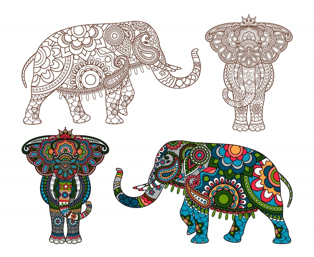 Vektor indischer elefant Premium Vektoren