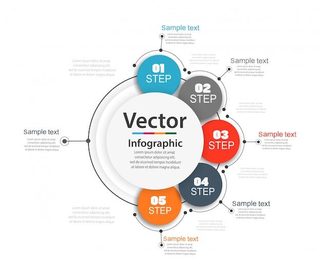 Vektor infografiken anzahl optionen vorlage mit 5 schritten Premium Vektoren